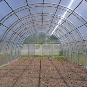 внутрь теплицы фермер